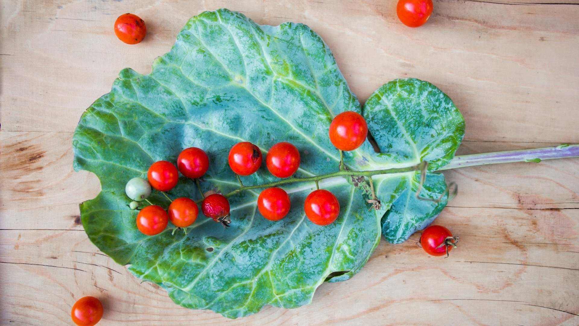 Assuaged-Collard-Green-Leaf-with-Tomatoes-Image