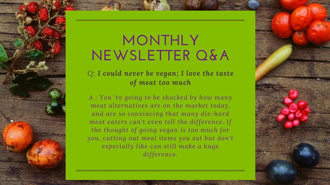 Monthly-Newsletter-Q&A