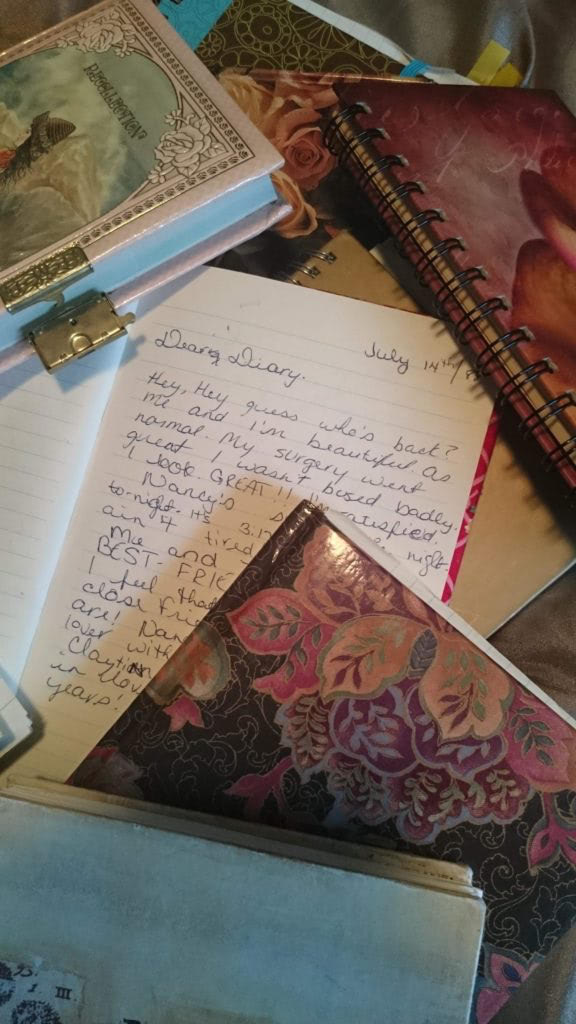 long time diary and notebooks