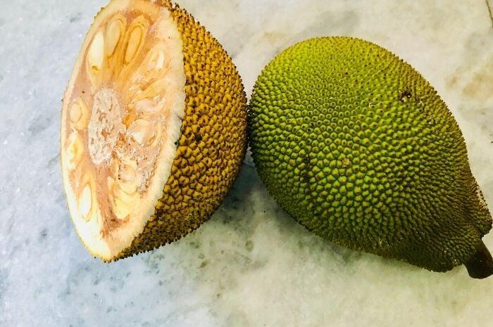 unripe-jackfruit-meat-alternative
