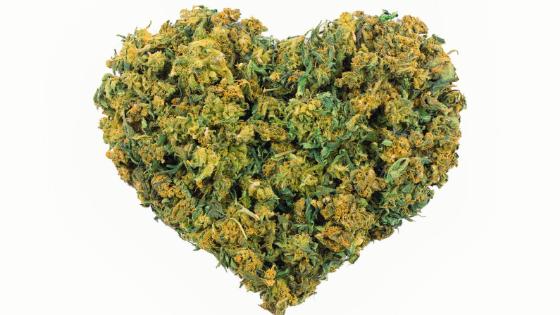 heart made of marijuana weed buds