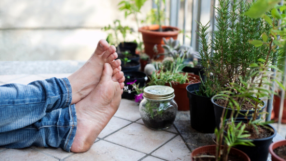 staying mindful with garden and grounding meditations