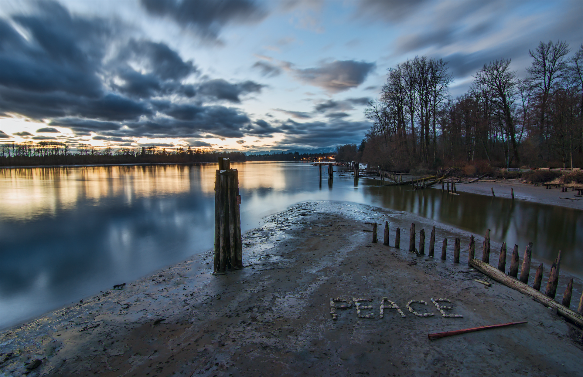 peace on the shore near the water lake forest sunset