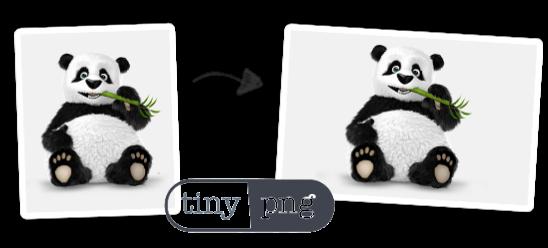 Tiny-PNG-Assuaged-Partner